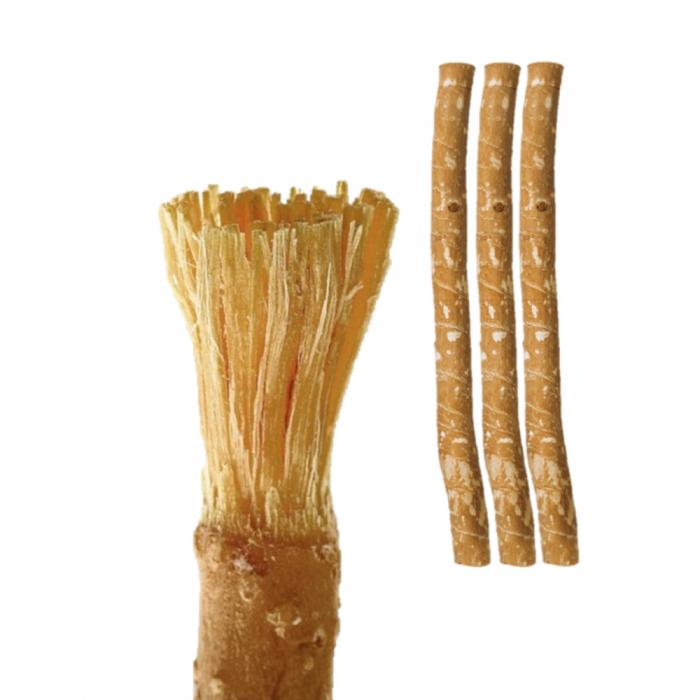 Miswak 樹枝牙刷- 2支裝